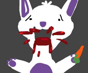 Rabbit vomiting blood