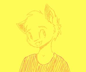 fox using an orange shirt
