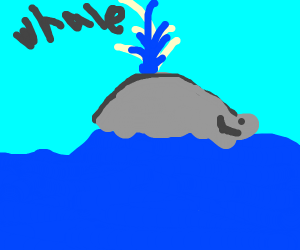 Happy whale on water surface