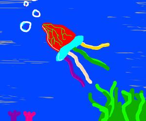 Vibrant jellyfish