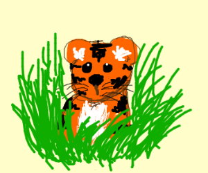 cute baby tiger in the grass