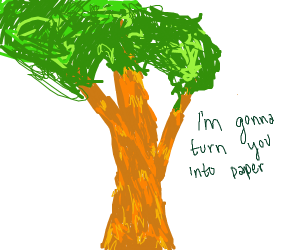 Man will turn Mommy tree into paper