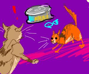 cat wars; the tuna can awakens