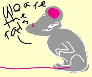 Rats rats we're the rats