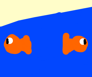 two fish swimming away from eachother