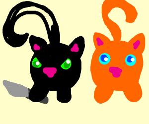 evil cat ball and orange cat ball