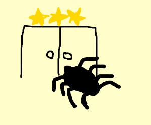 spider in 3 star hotel