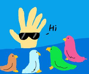 Hand w/ shades says hi to the bird club
