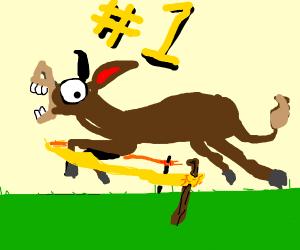 Donkey winning a race