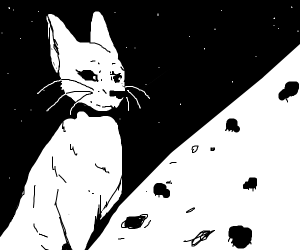 Cat looks at all the spiders on the moon