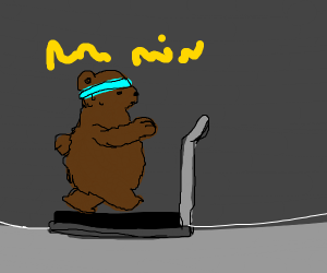 A sweating grizzly bear going to the gym