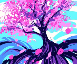 beautiful cherry blossom (sakura) tree