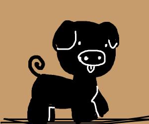Black pig standing on guitar strings