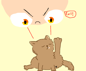 You are convinced the cat is evil