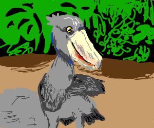 shoebill bird (look it up)