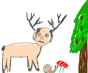 Human Deer