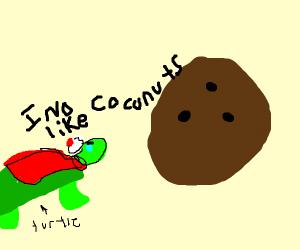 turtle no like coconut