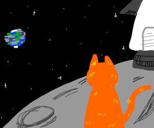 orgn alien cat on moon w/rocket looks @ earth