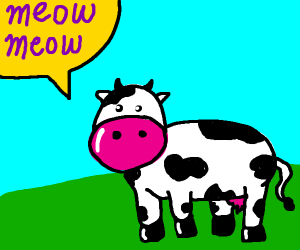 say meow meow im a cow