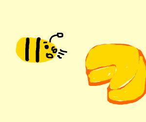 bee smells cheeswedge