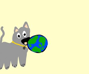 a gray cat eating the earth