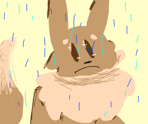 sad eeve in the rain