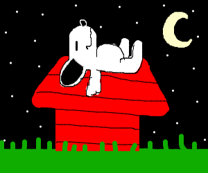 Snoopy asleep at midnight