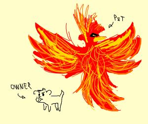 Dog and his pet phoenix
