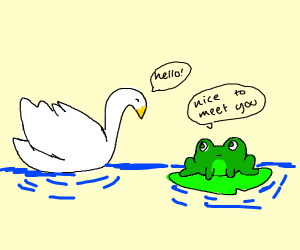 swan and frog meet