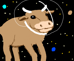 mud sea cow space travelling