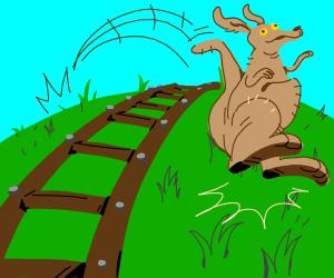 Kangaroo crossing the Tracks