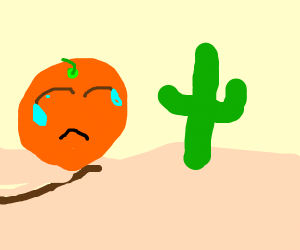 An orange lonely camel crying in the desert