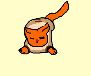 Cat inside bread