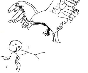 Vulture Sketching