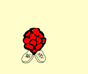 Raspberry wearing Shoes
