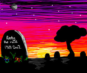Pet rock died