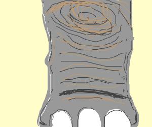 elephants knee
