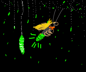 A firey fly surrounded by glow worms.