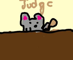 Mouse judge