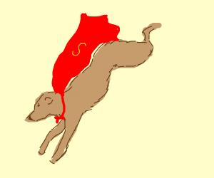 super doggo