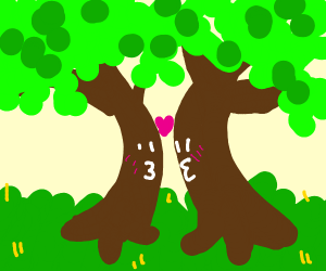 two trees fall in love