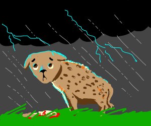 Hyena in a thunderstorm