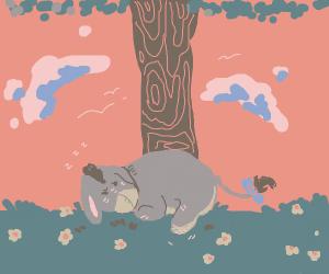 sleepy eeyore
