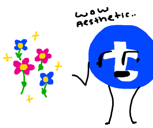 Beautiful aesthetically pleasing flowers