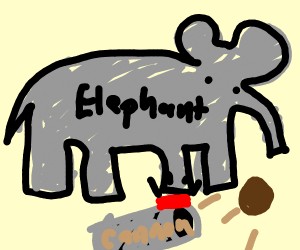 Elephant hiring Cannon