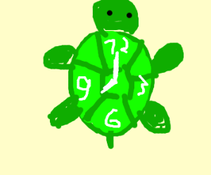 Time Turtle