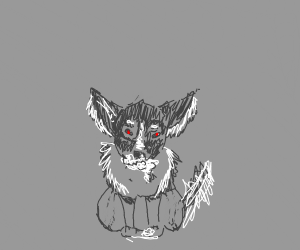 Rabid Chihuahua