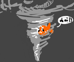 Fish in a tornado :(