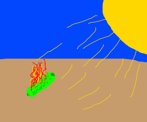 a pickle burned by the sun.