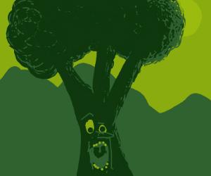 Shocked broccoli-looking tree